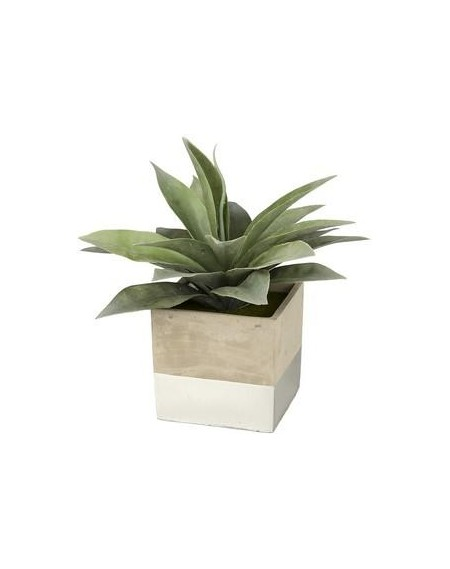 PIANTINA SQUARE ALOE SILVER
